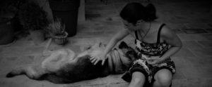 éducateur canin et son chien